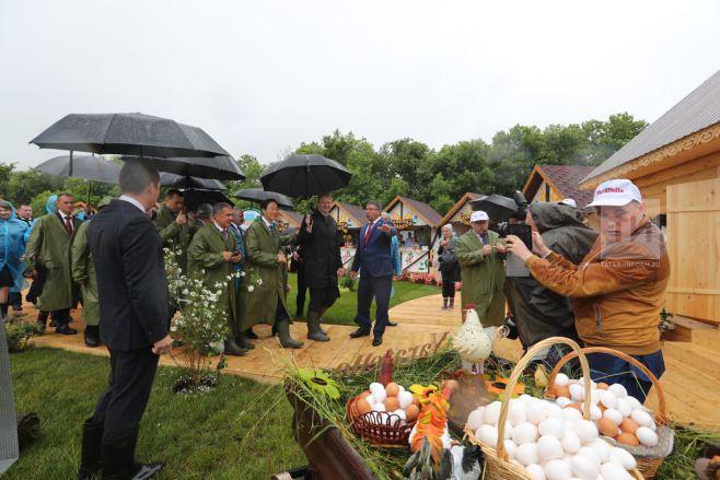 Минниханов и Ткачев дали старт Всероссийскому дню поля в Татарстане